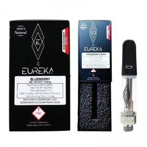 New EUREKA empty vape cartridges bulk empty carts with packaging 510 thread empty vape pen